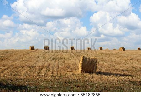 straw bales in a field after harvest