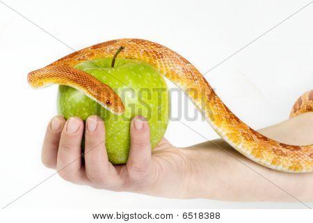 Versuchung