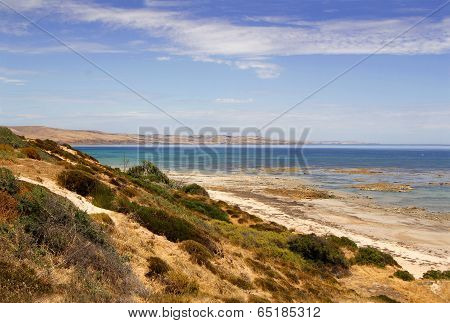 Australian Coastal Landscape