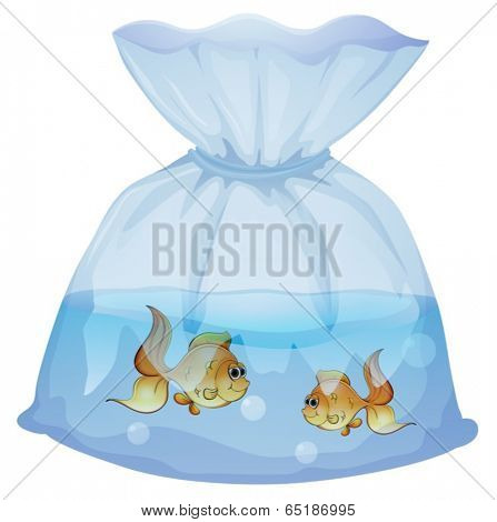 Illustration of a plastic pouch with two fishes on a white background