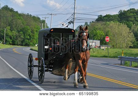 Horse And Buggy In Rural Pennsylvania