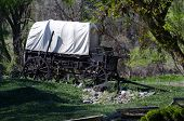 foto of covered wagon  - An Antique Covered Wagon in the Wilderness
