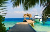 image of kuramathi  - Yacht moored shot through a opening in the trees - JPG