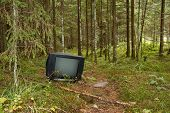 stock photo of televisor  - a black TV left in the forest - JPG