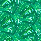 stock photo of banana tree  - Vector seamless pattern with big leafs inspired by tropical nature and plants like banana palm trees and ferns in multiple green colors - JPG