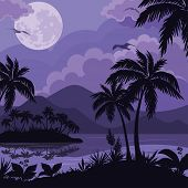 stock photo of moonlit  - Exotic tropical night landscape with moonlit sky - JPG