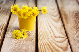 image of stepmother  - Bouquet of flowers mother and stepmother on a wooden table - JPG