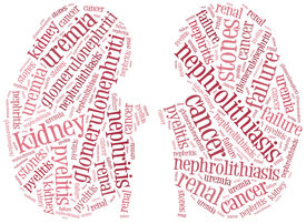 pic of sick kidney  - Tag or word cloud illustration kidney diseases related - JPG