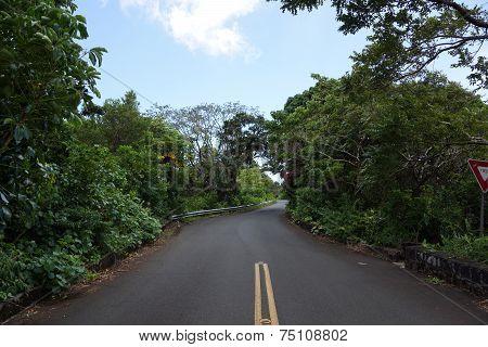 Tantalus Mountain One Lane Bridge