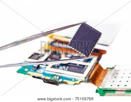 Tweezers With Detail Close-up