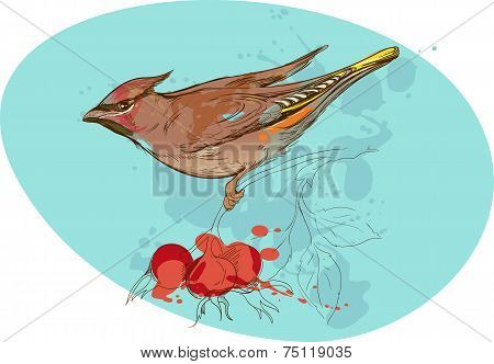 image of bird on a branch with sorbus berries and smudges