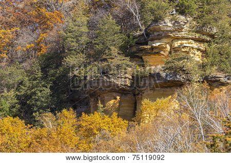 Cliff In Trees Autumn
