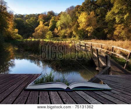 Stunning Vibrant Autumn Landscape Of Footbridge Over Lake In Forest Conceptual Book Image