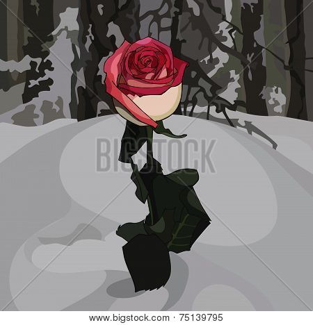 Rose In The Snow.eps