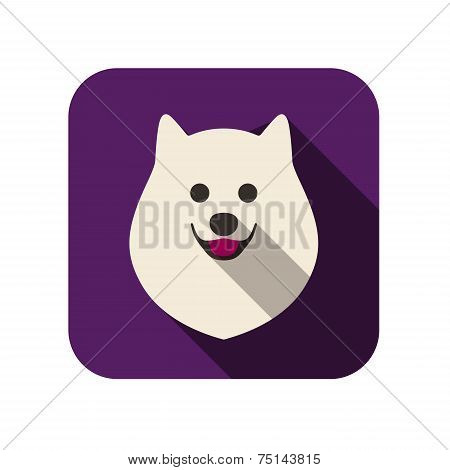 Pomeranian animal flat icon