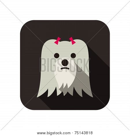 Maltese animal flat icon