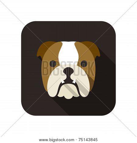 Bulldog animal flat icon
