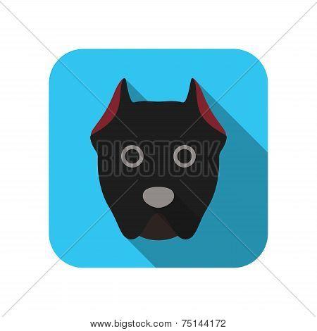 Cane corso animal flat icon