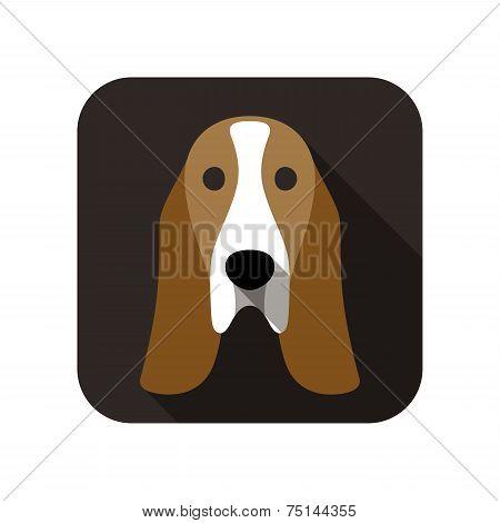 Basset hound animal flat icon