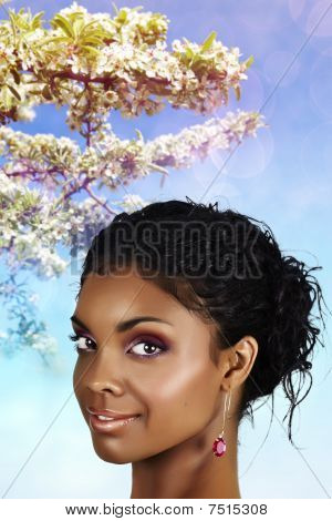African Under Spring Blooming Branches