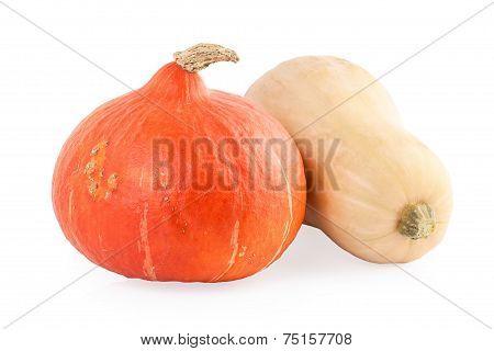 Two Pumpkins hokkaido and butternut
