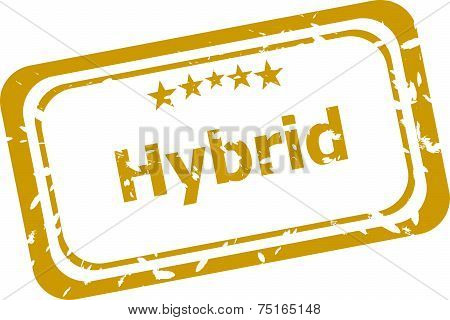 Hybrid Grunge Rubber Stamp Isolated On White