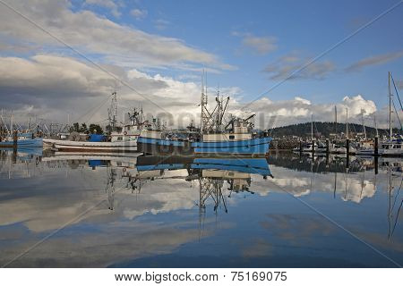 Fishing Fleet In Harbor