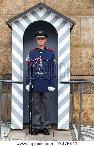 Prague. Soldier Guard Of Honor Near The Presidental Palace.