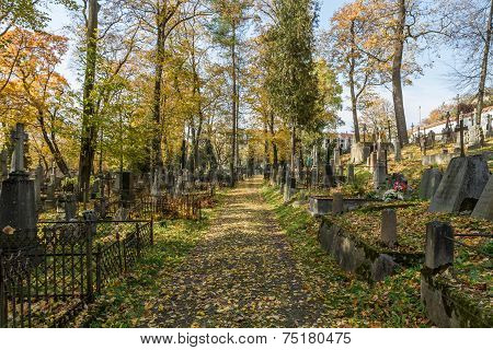 Many Old Crosses In Cemetery