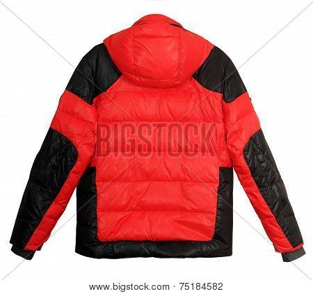 Men's Down Jacket (rear View)