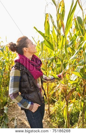 Young Woman Standing In Cornfield