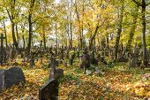 stock photo of urn funeral  - A very old cemetery photographed in autumn