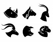 picture of animal husbandry  - Set of black silhouette vector animal head icons in profile with a rhino  horse  antelope  goat  pig and sheep - JPG