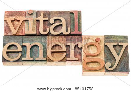 vital energy typography - isolated text in letterpress wood type blocks