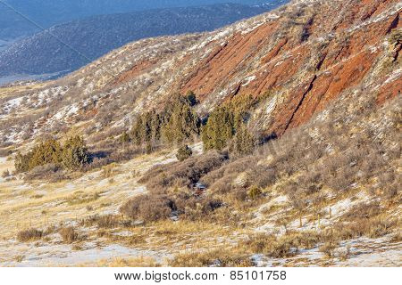 layers of red sandstone rock - winter scenery in Red Mountain Open Space near Fort Collins, Colorado