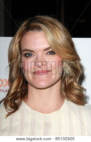 LOS ANGELES - MAR 7:  Missi Pyle at the Raising The Bar To End Parkinsons Event at the Public School 818 on March 7, 2015 in Sherman Oaks, CA