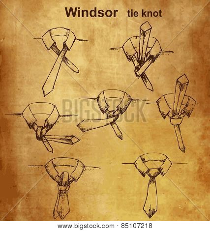 Vector tie and knot vintage instruction, Windsor tie knot