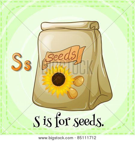 Letter S is for seeds