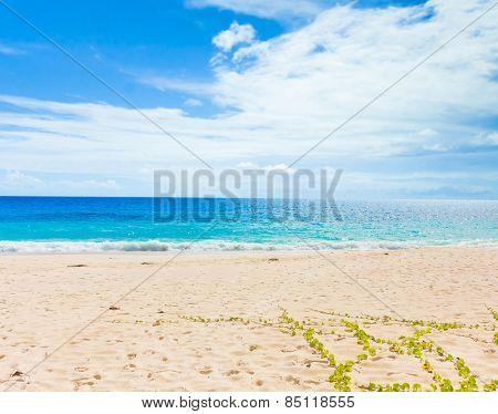 Beach Waters Tide