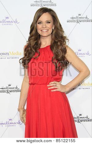 LOS ANGELES - JAN 8: Rachel Boston at the TCA Winter 2015 Event For Hallmark Channel and Hallmark Movies & Mysteries at Tournament House on January 8, 2015 in Pasadena, CA