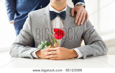 people, celebration, homosexuality, same-sex marriage and love concept - close up of male gay couple with red rose flower putting hand on shoulder