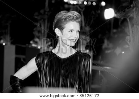 BERLIN, GERMANY - FEBRUARY 13: Sandy Powell attends the 'Cinderella' premiere during the 65th Berlinale International Film Festival at Berlinale Palace on February 13, 2015 in Berlin, Germany.