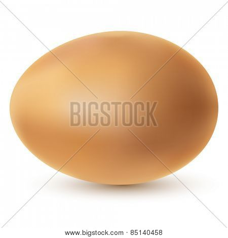 Illustration chicken egg on a white background.