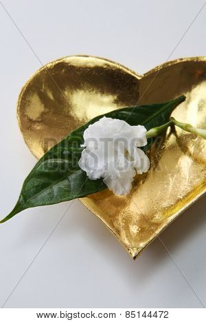 jasmine flower resting golden heart shape plate