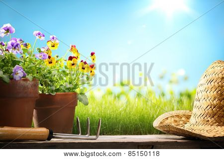 Pansy flower and gardening tools on wood,Copy space for your text.