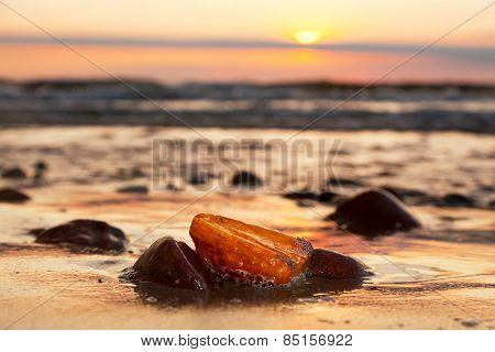 Amber stone on the beach at sunset. Precious gem, treasure concept. Baltic Sea, Poland.