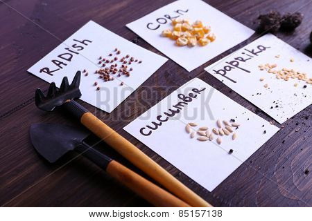 Different seeds on pieces of paper with ground and gardening tools on wooden background