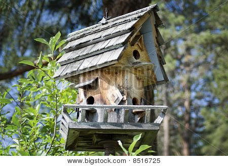 Birdhouse in the Forest