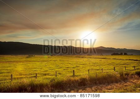 grassland in mountains