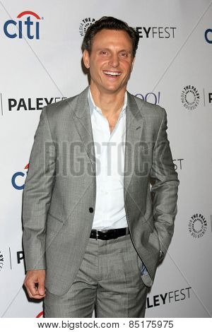 LOS ANGELES - MAR 8:  Tony Goldwyn at the PaleyFEST LA 2015 -